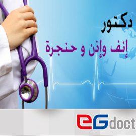 د. أحمد علي إبراهيم السيد
